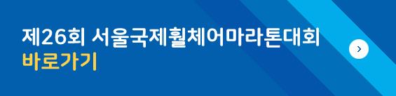 제26회 서울국제훨체어마라톤대회 바로가기