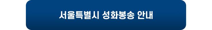 서울특별시 성화봉송 안내